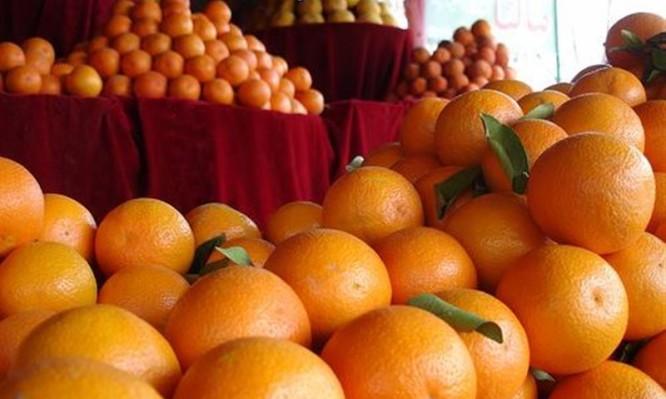 portokalia1.jpg