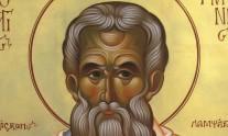 αγίου παρθενίου