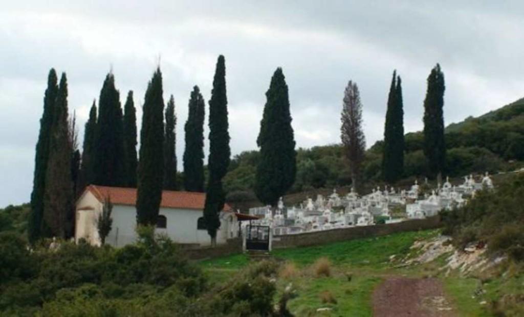 Γιατί φυτεύουν κυπαρίσσια στα νεκροταφεία | Dogma